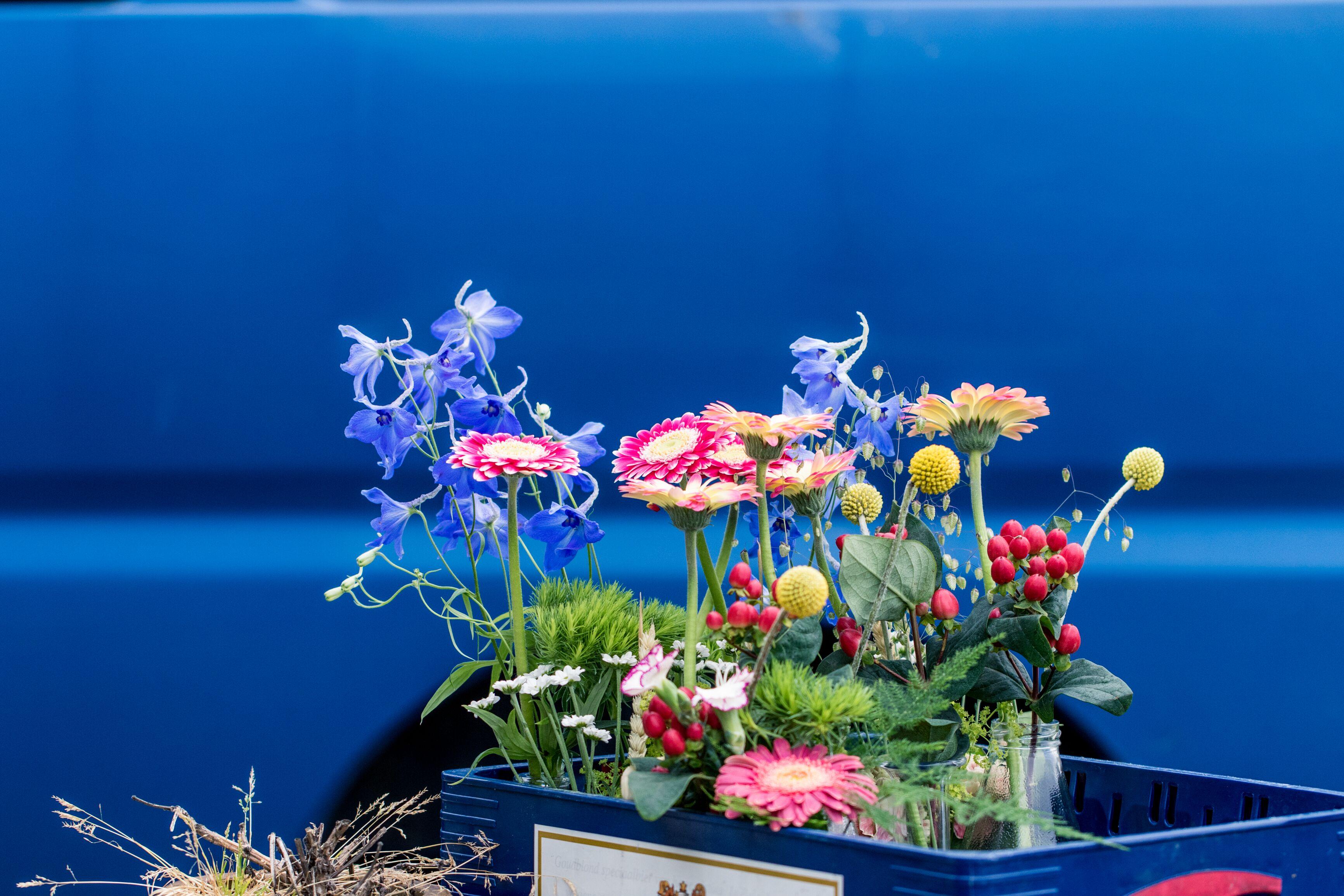 BeGuapa bloemen, beguapa.nl, bloemen op locatie